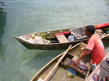 Preparing fresh fish, nr. Cartagena, Colombia