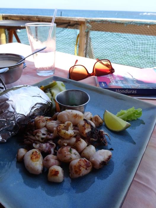 Delicious grilled squid, Honduras