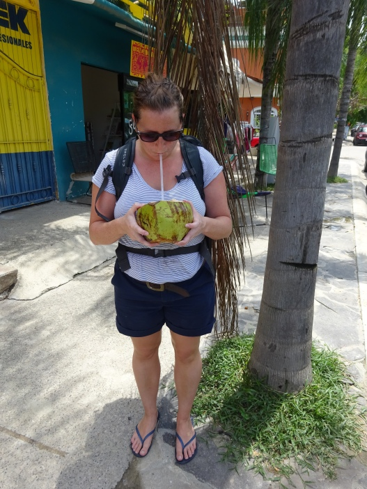 Final coconut in Latin America